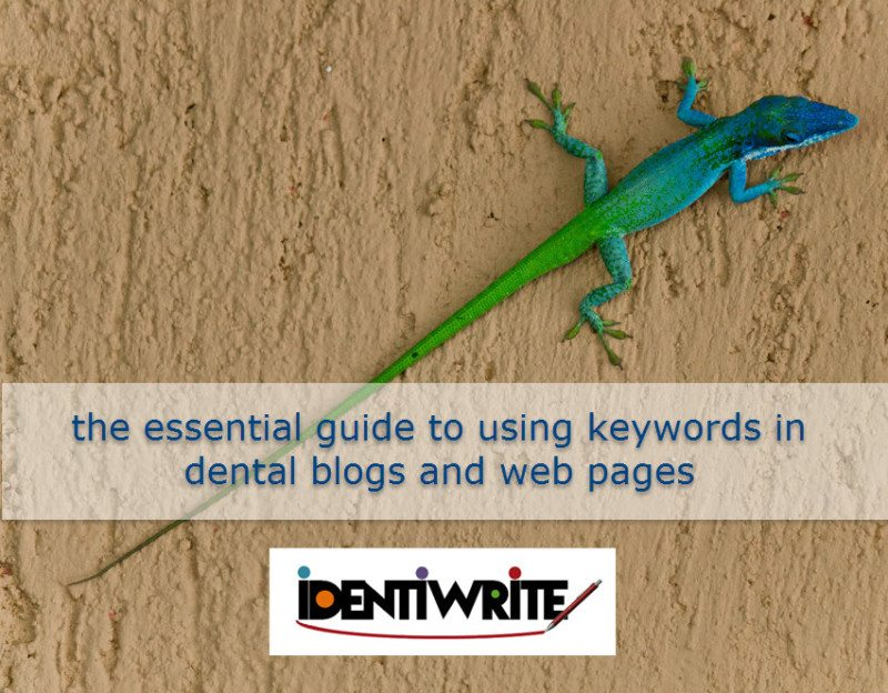lizard with long tail represents keywords for dental blog